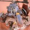 fichtenfoo-beetle-12